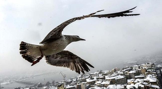 Sibirya İstanbul'a Geldi! Kar Kalınlığı 122 cm