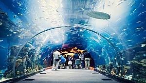 Tünel Akvaryum çok özel bir proje