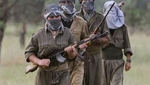 12 terorist etkisiz