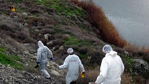 Trabzon'da, çalılıkta erkek cesedi bulundu