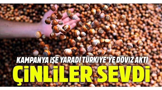 Çinliler Türk fındığını sevdi, Türkiye'ye döviz aktı