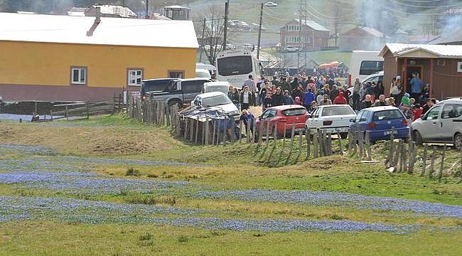 Trabzon'daki Mor Yayla ziyaret akınına dayanamadı