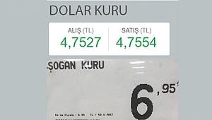 Dolar kuru: 4.75, Soğan kuru: 6.95