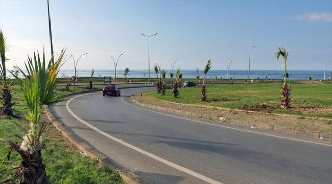 Trabzon'da sahile 100 Palmiye fidanı dikildi
