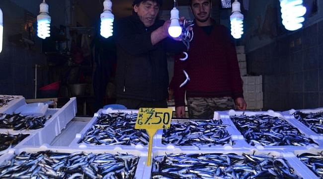 Balık ucuzladı ama alan yok