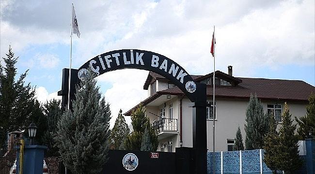 Çiftlik Bank sanıkları savunmalarını yaptı