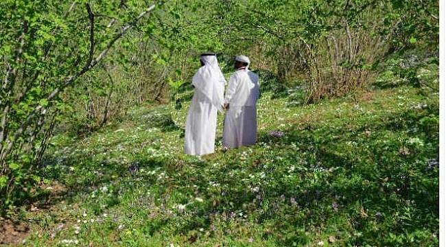 Araplar Karadeniz'de fındık bahçesi alıyor
