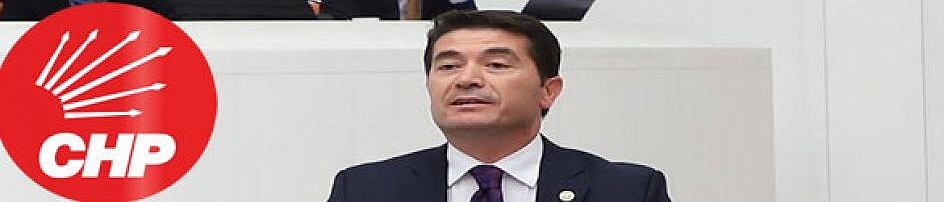Kaya Trabzon'un her sorununu Meclis'e taşıyor