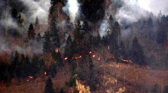 Yangınlar elektrik tellerinden mi çıktı