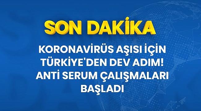 Türkiye'de koronavirüs aşısı için anti serum yapıyor