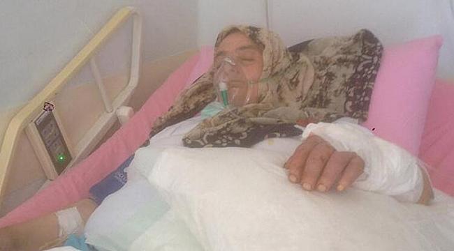 Trabzon'da köpeklerin saldırısında ağır yaralandı