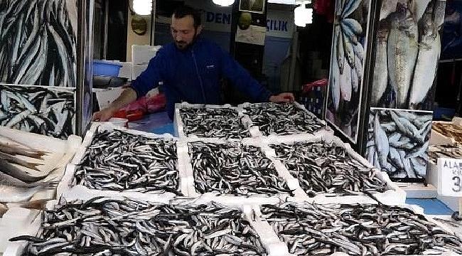 Trabzon'da tezgahlarda, palamudun yerini hamsi aldı