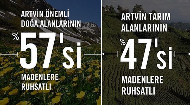 Artvin'de tarım bitiyor, doğa yok ediliyor