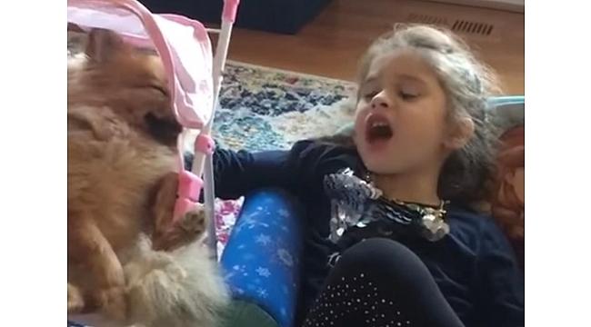 Volkan Konak'ın minik kızı Derin söyledi köpeği Vera kendinden geçti