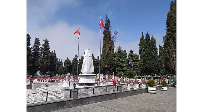 Trabzon Büyükşehir Belediyesi kesilen selvi ağaçlarıyla ilgili açıklama yaptı