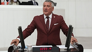 İYİ Parti Trabzon Milletvekili Örs, Araklı'yı meclise taşıdı