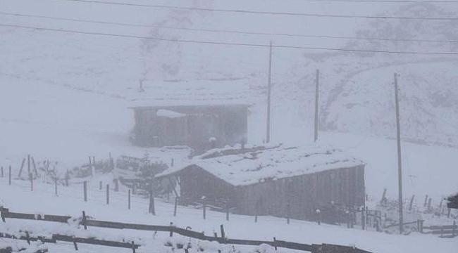 Doğu Karadeniz'de kar kalınlığı 30 santimetreyi buldu