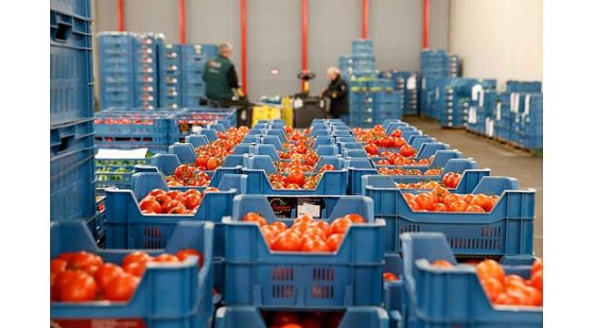 Rusya'ya en çok yaş sebze, meyve ve alabalık gönderiyoruz