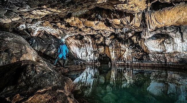 15 ildeki 83 mağarada yaşayan hayvan türleri araştırılıyor