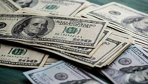 Dolar / TL'de yeni rekor