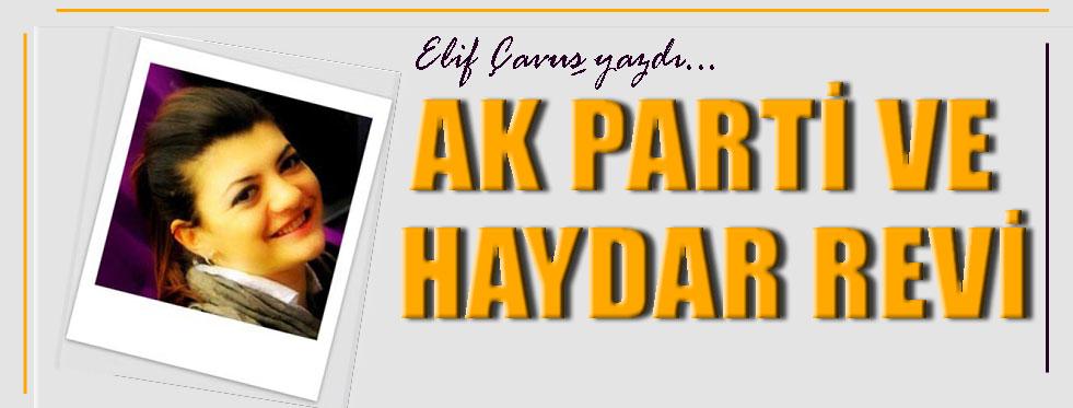 AK Parti ve Haydar Revi...